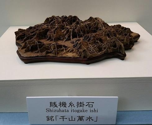 盆栽水石1.jpg