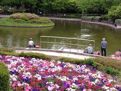 鷺山公園.jpg